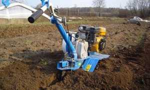 Вспашка земли мотоблоком с плугом и фрезами: видео, фото
