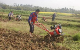 Обработка земли (почвы) мотоблоком: видео, фото