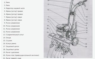 Мотокультиватор Крот регулировка зажигания — особенности